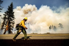 A firefighter battles the Dixie Fire along Highway 89 in Lassen National Forest, Calif., on Monday, Aug. 16, 2021. Critical fire weather throughout the region threatens to spread multiple wildfires burning in Northern California. (AP Photo/Noah Berger)