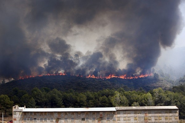 Portugal, Spain Wildfire Photo Gallery