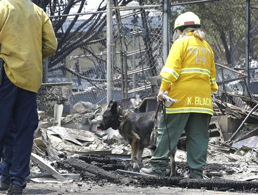 Diesel, a search and rescue dog from the Santa Clara County Sheriff's Department, and his handler, Kris Black, search the rubble, Sunday June 26, 2016, of a home destroyed by a fire that swept through the area near Lake Isabella in Squirrel Valley, Calif. The fire has claimed at least two lives and burned more than 200 homes and other buildings. (AP Photo/Rich Pedroncelli)