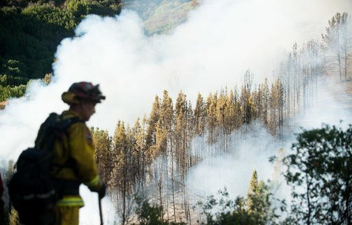 A firefighter watches as smoke from a wildfire swirls around a stand of trees near Morgan Hill, Calif., on Tuesday, Sept. 27, 2016. A heat wave stifling drought-stricken California has worsened a wildfire that burned some buildings and forced people from their homes in remote communities along the Santa Cruz Mountains. (AP Photo/Noah Berger)