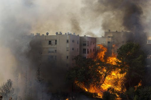 A fir burns in Haifa, Israel, Thursday, Nov. 24, 2016. Israeli police have arrested four Palestinians in connection with one of several large fires that damaged homes and prompted the evacuation of thousands of people in the past few days. Police are investigating the causes, including possible arson. Windy and hot weather have helped fan the flames. The blazes started three days ago near Jerusalem and in the north. Hundreds of homes were damaged. Russia, Italy and other countries are assisting the Israeli firefighters. (AP Photo/Ariel Schalit)