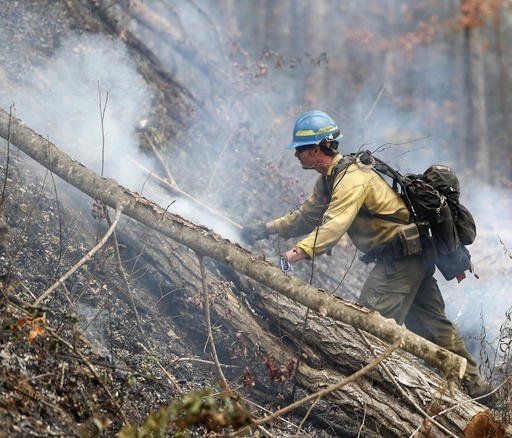 Firefighter Kevin Zimmer works to control a wildfire Tuesday, Nov. 15, 2016, in Clayton, Ga. On Tuesday, the Tennessee Valley Authority issued a burn ban on its public lands across Tennessee and in parts of Alabama, Georgia, Kentucky, Mississippi, North Carolina and Virginia. U.S. Forest Service spokesman Adam Rondeau has said the agency is tracking wildfires that have burned a total of 80,000 acres across the South. (AP Photo/John Bazemore)