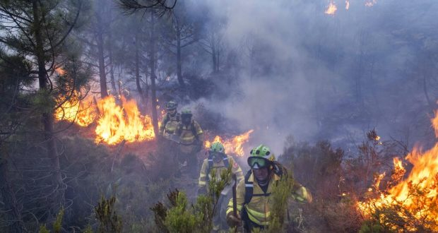 Forest firefighters work on a wildfire near the town of Jubrique